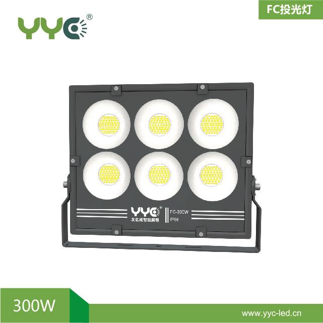 FC303-300W